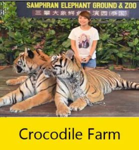 crocodile farm with lou lou tour